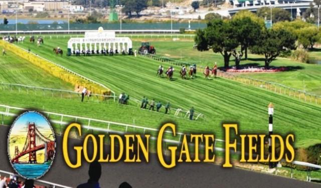 Golden gate fields